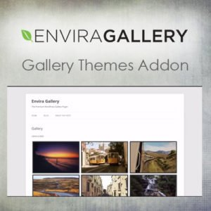 Sale! Buy Discount Envira Gallery – Gallery Themes Addon - Cheap Discount Price