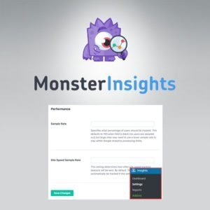 Sale! Buy Discount MonsterInsights – Performance Addon - Cheap Discount Price