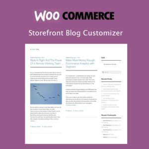 Sale! Buy Discount Storefront Blog Customiser - Cheap Discount Price